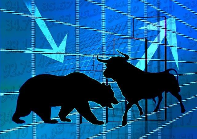 Medvědi a býci